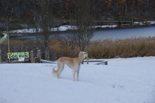 初!雪遊び5