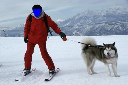 ♪スキー天国へ~♪4