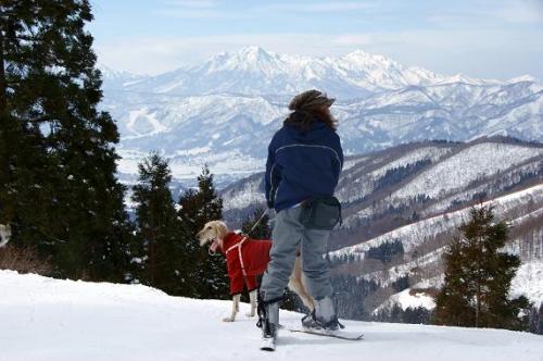 ♪スキー天国へ~♪6