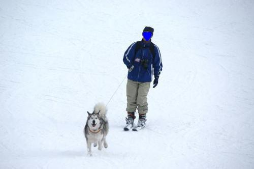 ♪スキー天国へ~♪5
