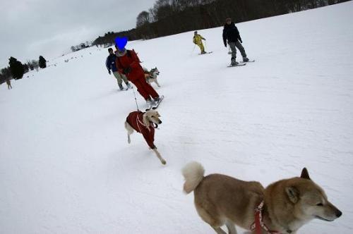 スキー天国へ~♪14