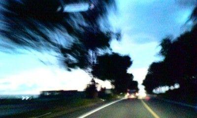 20081027-1.jpg