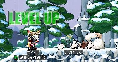 Maple0894.jpg
