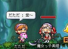 Maple1412.jpg
