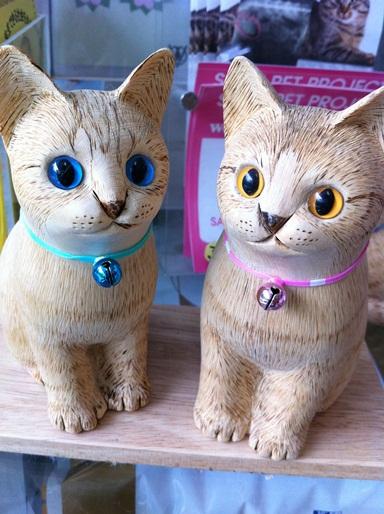 20111009猫の病院03