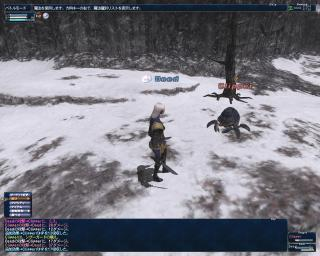 2008_10_19_23_27_56.jpg