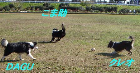 DSC01096.jpg
