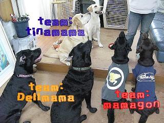 2008年 ティナママ家 016a
