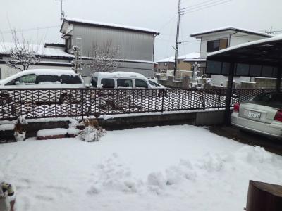25日雪2