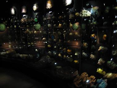 国立科学博物館30