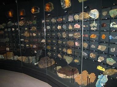 国立科学博物館31