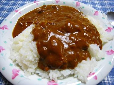 宇宙日本食05