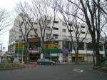 tokiwa1901280.jpg