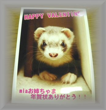 fromyukidarumasan2.jpg