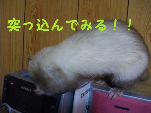 itazura2.jpg