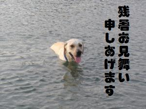 DSC00569縲?繝・ぅ繝・・_convert_20090817201258