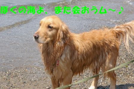 IMGP8369.jpg