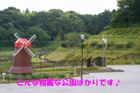 IMGP8873.jpg