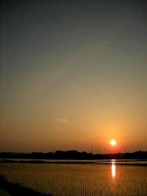 田園からの夕日1