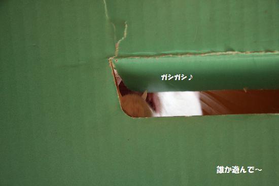 6_20090412201057.jpg