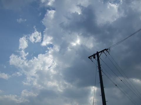 ちょっとく曇ってきました