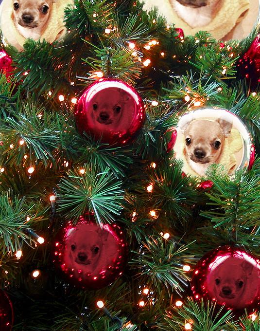 PhotoFunia_クリスマスツリー