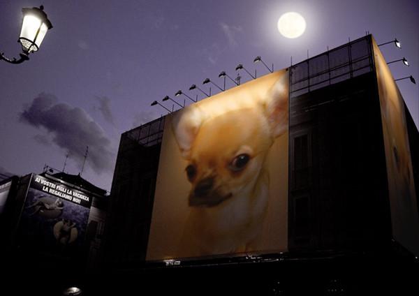 PhotoFunia_夜のポスター2