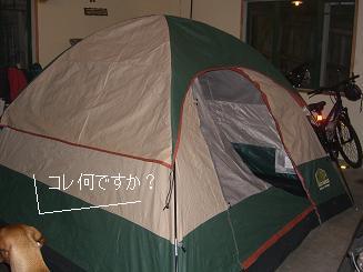 1_20081218061928.jpg