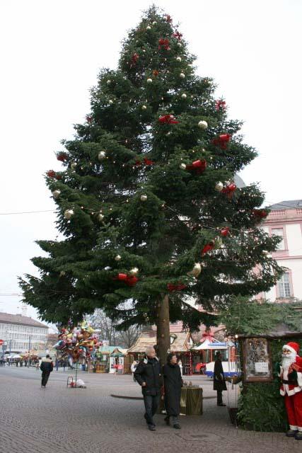 ダルムシュタットのクリスマスツリー