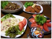 豚肉と野菜のソース炒めご飯(焼きそばの麺なしとも言う)