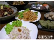 すき焼き風ご飯とトトロ&シナモン