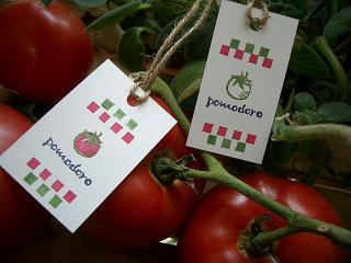 トマト 002 ブログ