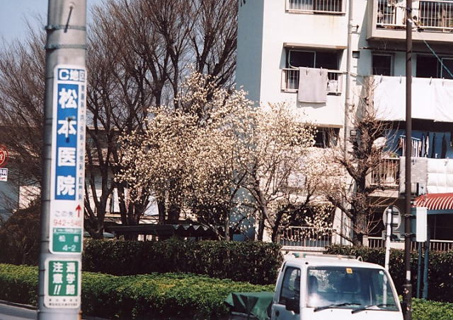 AV108.jpg
