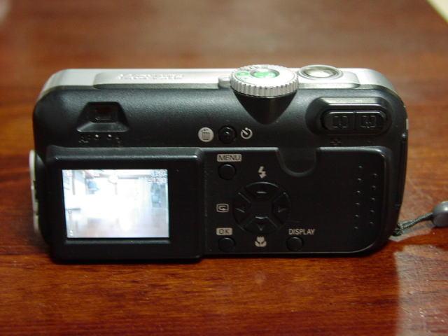P4300173.jpg