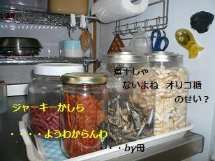 gsei2.jpg