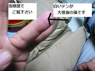 omo4.jpg