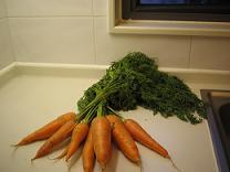 有機野菜(小)