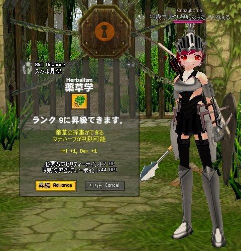 mabinogi_466.jpg