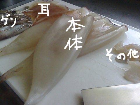 mabinogi_472.jpg