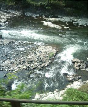 トロッコ列車からの川