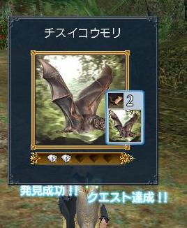 20070325003708.jpg