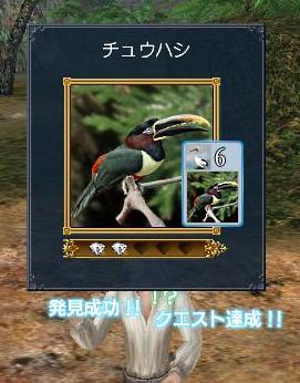20070325004001.jpg