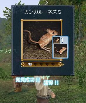 20070325215440.jpg
