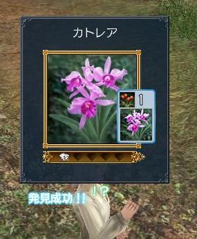 20070325215659.jpg