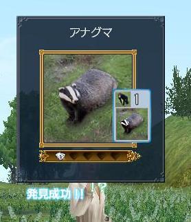 20070327215141.jpg