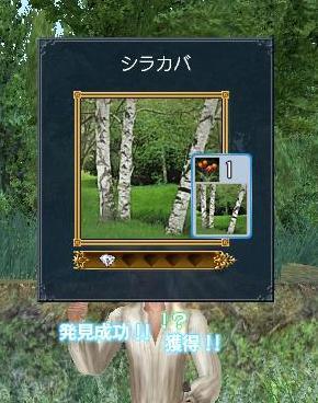 20070327215217.jpg