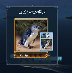 011208 124411コビトペンギン