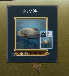 022808 194252タンバキー