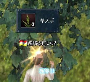 032708 065321草