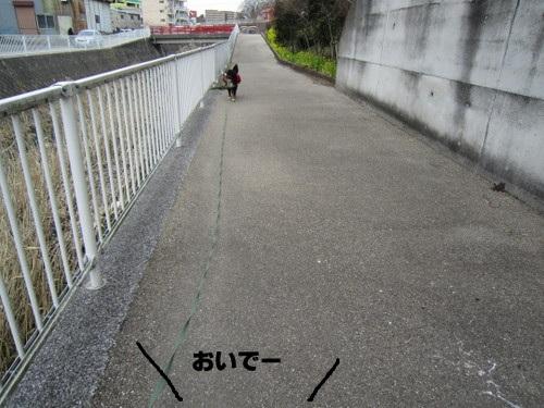 IMG_2503.jpg
